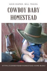 cowboy baby homesteadPIN